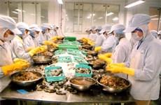 Phu Yen: Shrimps prosper in mixed ponds