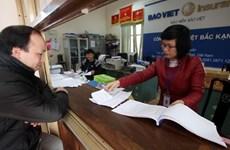 Insurance sector revenue grows 19 percent