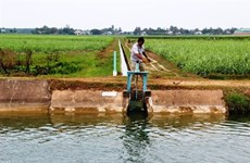 Da Nang seeks to prepare sufficient water for agriculture
