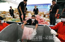 Myanmar, Thailand dispose seized drugs worth one billion USD