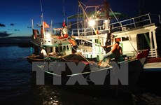 Kien Giang develops fisheries exploitation