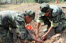 Vietnam's military engineers assessed for peacekeeping readiness