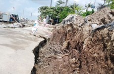 Authorities relocate Bac Lieu residents after landslides