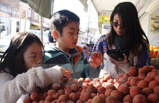 Vietnam earns 1.7 billion USD from vegetable, fruit exports