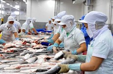 Seafood processing fuels export in Tien Giang