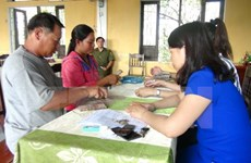 Thua Thien-Hue's aquaculture, fishing activities expanded
