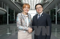 Vietnamese, German parties hold sixth dialogue in Berlin