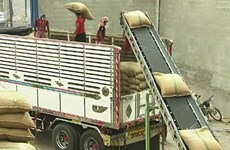 Thailand: new foreign workers law hinders rice exports
