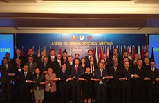 EU supports ASEAN's central role in forming regional structure in East Asia