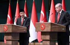 Indonesia, Turkey begin CEPA negotiations