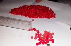 Quang Tri, Lao province bust smuggling of 40,000 synthetic pills