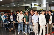 Vietnamese labourers in RoK receive legal consultation