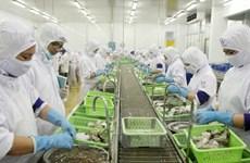 Ca Mau moves to expand shrimp export market