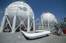 Vietnam announces crude oil reserves plan