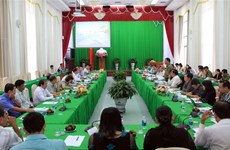 Can Tho makes thorough preparations for APEC 2017