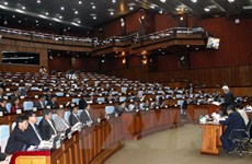 Cambodian Senate passes amendments to law on political parties