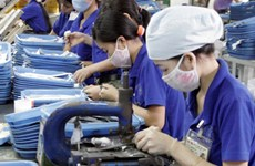 HCM City's industrial production index rises 7.51 percent