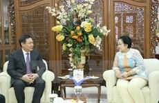 Vietnam, Indonesia keen on boosting strategic partnership