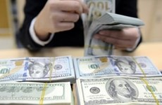 SBV issues bills to shore forex reserves