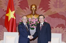 NA Vice Chairman applauds VN-Japan audit cooperation