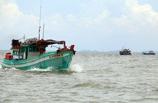 Vietnam strongly protests use of force against Vietnamese fishermen