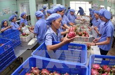 Vietnam sees feasible 3 billion USD export of fruits, vegetables