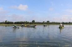 Flooding season kicks off in Mekong Delta
