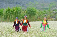 Ha Giang province awaits tourism boom