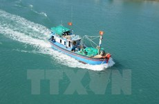Vietnam, Indonesia FMs talk about shooting of VN's fishing boat