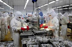 Seafood exports estimated at 8 bln USD in 2017