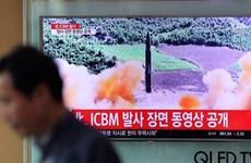 FM spokesperson: Vietnam deeply concerned about DPRK's missile launch