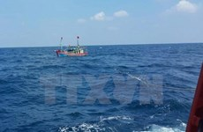 FM spokesperson: Vietnam opposes use of force against fishermen