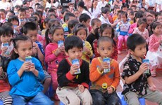 Children in Bac Ninh to benefit from school milk programme