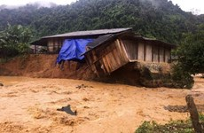 Joint efforts made to support flood victims