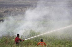 SEA Games: Malaysia urges Indonesia to control haze