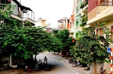 Hanoi to launch art, food space in Tay Ho