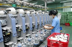 Hanoi targets parts supply growth