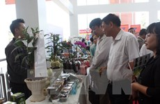 Conference discusses developing Lam Dong high-tech farming