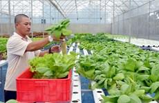 High-tech farming development sluggish