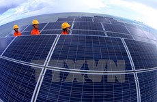 Indian group studies investment in solar power in Binh Phuoc