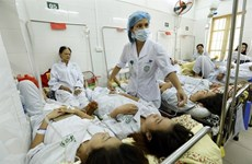 Hanoi, HCM City focus on stamping out dengue fever
