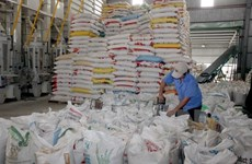 Rice export target set at 5.2 million tonnes in 2017