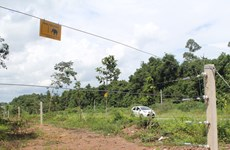 Dong Nai tests electric fence to protect elephants