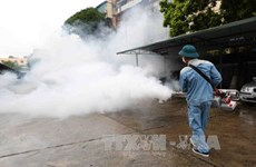 Health ministry steps up efforts to prevent dengue fever outbreak