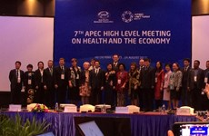 APEC meeting: health sector faces financial challenges
