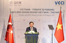 Deputy PM: trade-economic cooperation pillar of Vietnam-Turkey ties