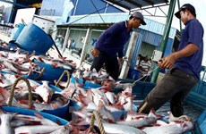 Vietnam, Australia cooperate in combating illegal fishing