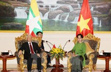 Party chief meets with Myanmar State Counsellor