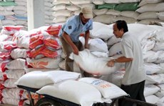 Laos' rice exports drops 42 percent in first half