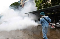 Hanoi: new dengue fever cases drop